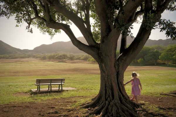 child, girl, nature
