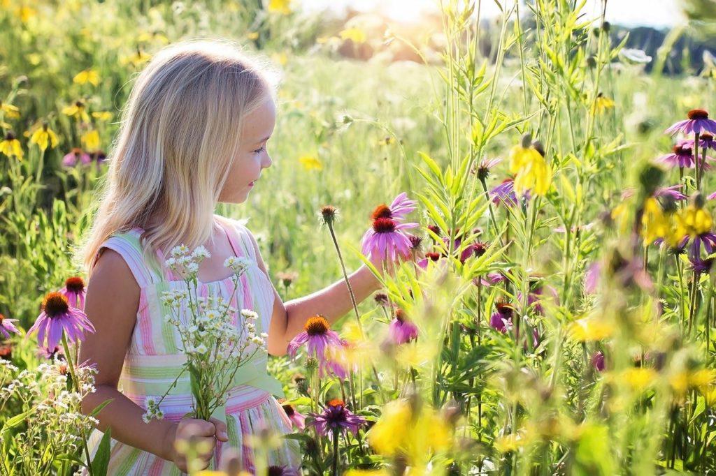 little girl, wildflowers, meadow